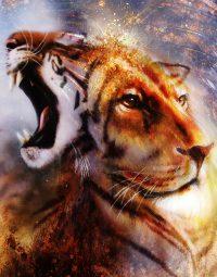 lion-portrait-kleur-staand